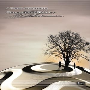 Unicorn Music - PERCUSSION BULLET - Future Accommodation