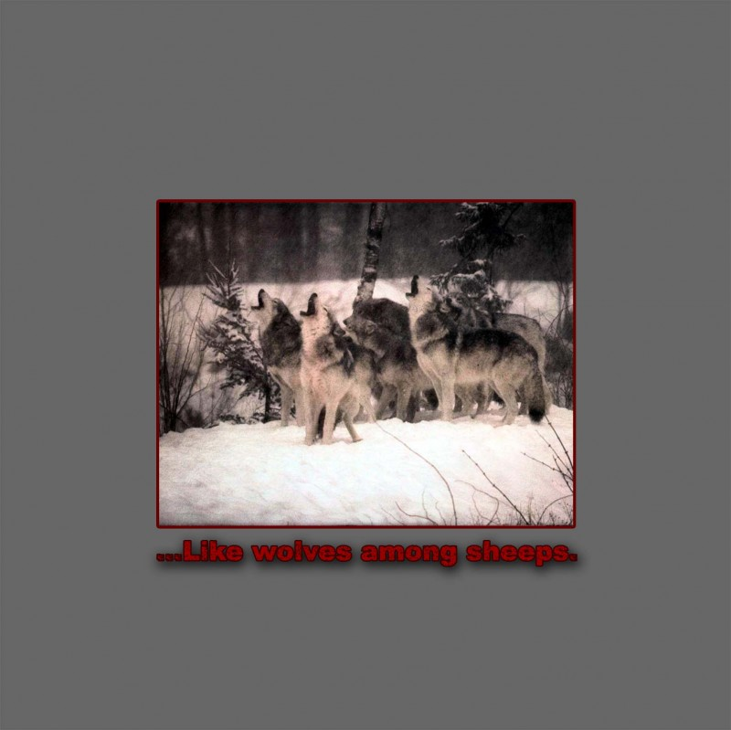 Golden Dawn Records - .Various - ...like wolves among sheeps.