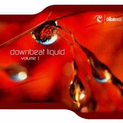 Chillcode Recordings - .Various - downbeat liquid vol.1