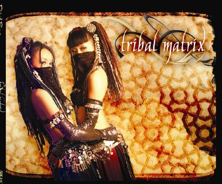 Dakini Records - .Various - Tribal Matrix