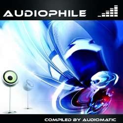 Spin Twist Records - .Various - audiophile