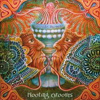 Peak Records - FLOOTING GROOVES - Upsyde Downe