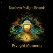 Northern Psylight Records - .Various - Psylight moments