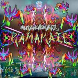 6 Dimension Soundz - MANDALAVANDALZ - kamakaze