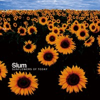 Sunflowers Of Today - SLUM - Sunflowers Of Today