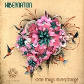 Aleph Zero Records - HIBERNATION - Some Things Never Change