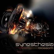Freeance - SYNESTHESIA - Blossom