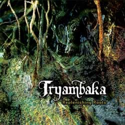 One Foot Groove - .Various - TRYAMBAKA: replenishing roots