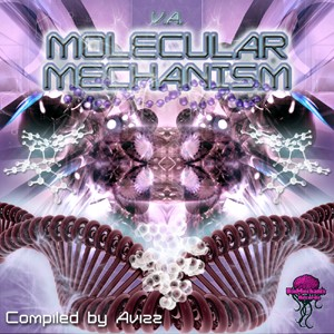 Biomechanix Records - .Various - Molecular Mechanism