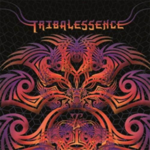 Triplag Music - .Various - Tribalessence