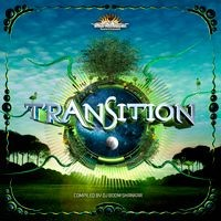 BMSS Records - .Various - Transition