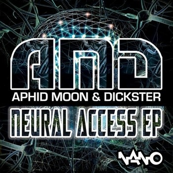 Nano Records - AMD - Neural Access