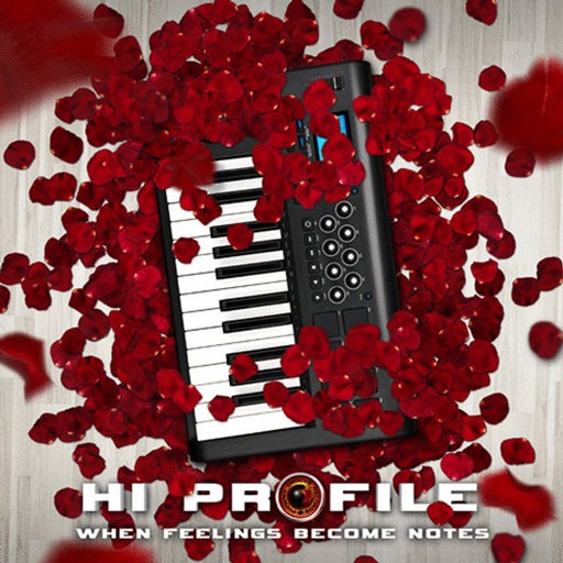 Phoenix Groove Records - HI PROFILE - When Feelings Become Notes