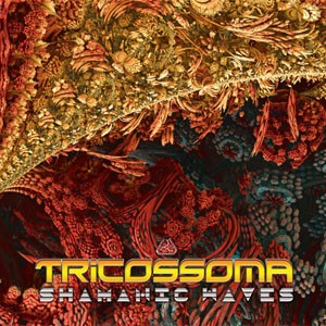 Digital Drugs Coalition - TRICOSSOMA - Shamanic Waves