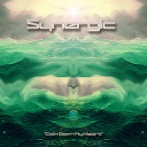 Space Baby Records - SYNERGIC - Calm Down My Heart