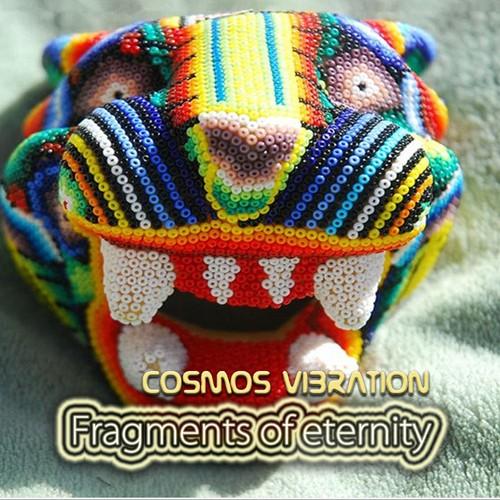 Rizoma Records - COSMOS VIBRATION - Fragments of eternity