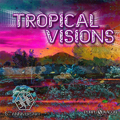 Purple Hexagon - .Various - Tropical Visions