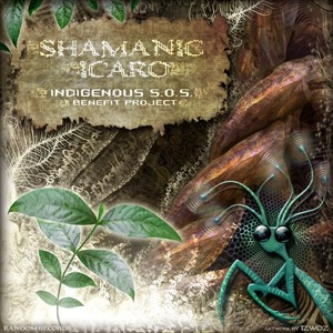 Random Records - .Various - Shamanic Icaro