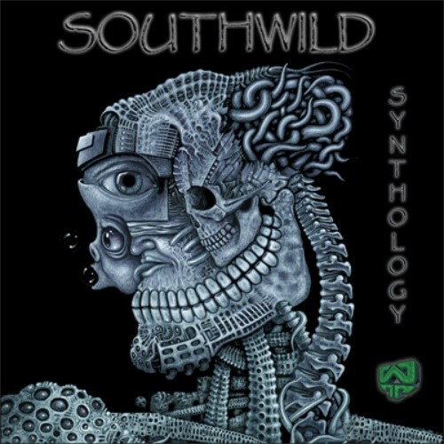 Wildthings Records - SOUTHWILD - Synthology