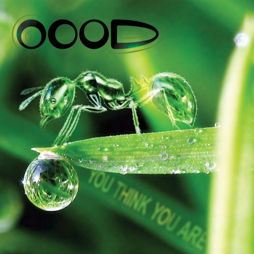 Vertigo Records - OOOD - You Think You Are