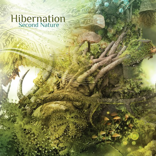Interchill Records - HIBERNATION - Second Nature
