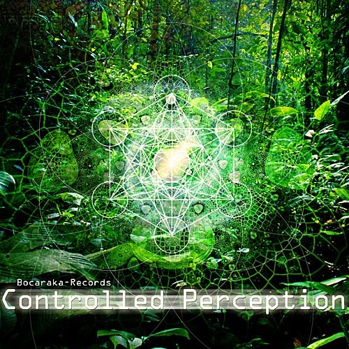 Bocaraka Records - .Various - Controlled Perception