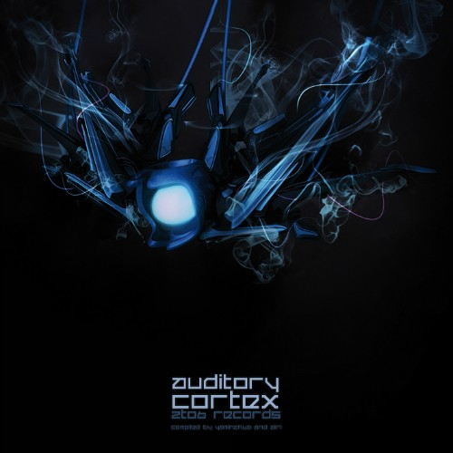 2TO6 Records - .Various - Auditory Cortex