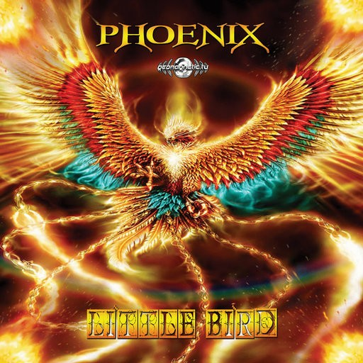 Geomagnetic.tv - PHOENIX - Little Bird