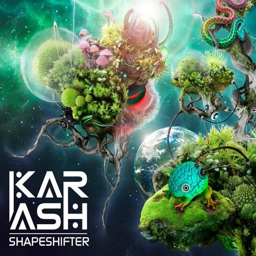2TO6 Records - KARASH - Shapeshifter