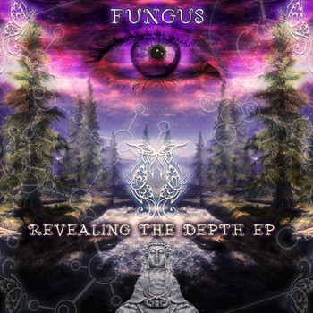 Space Baby Records - FUNGUS - Revealing The Depth