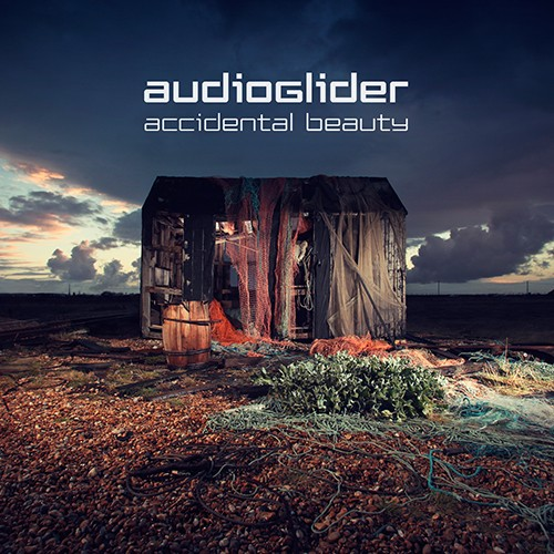 Section Records - AUDIOGLIDER - Accidental Beauty
