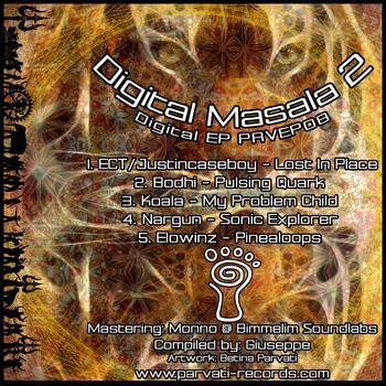 Parvati Records - .Various - Digital Masala II