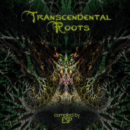 MadMuzik Records - .Various - Transcendental Roots