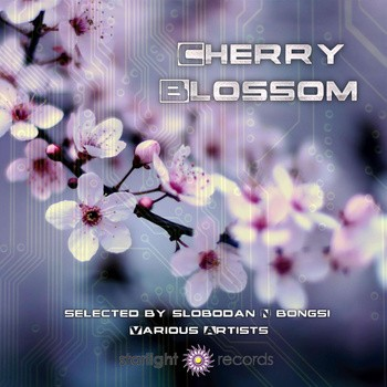 Starlight Records - .Various - Cherry Blossom