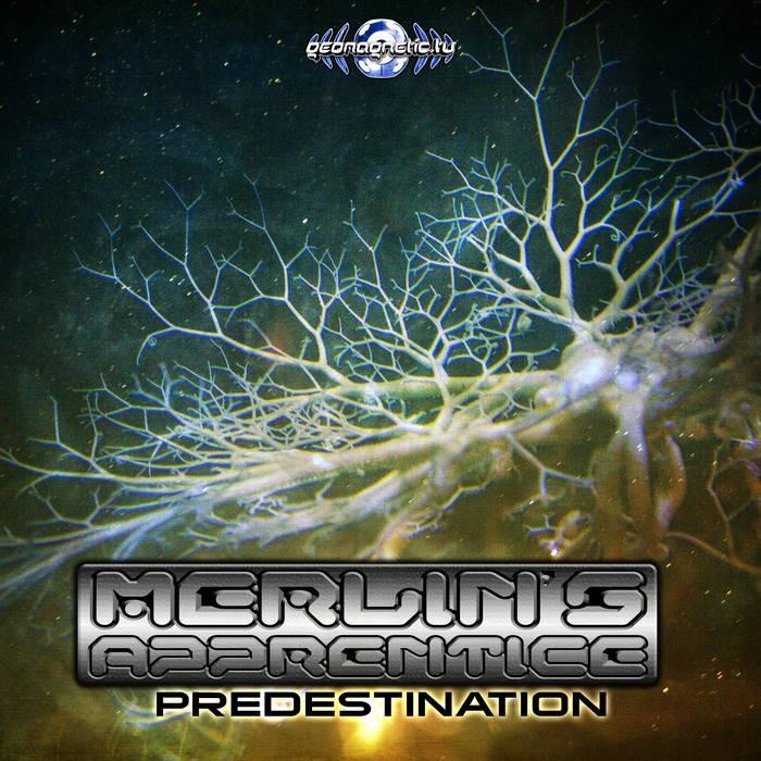 Geomagnetic.tv - MERLIN S APPRENTICE - Predestination (geoep229)