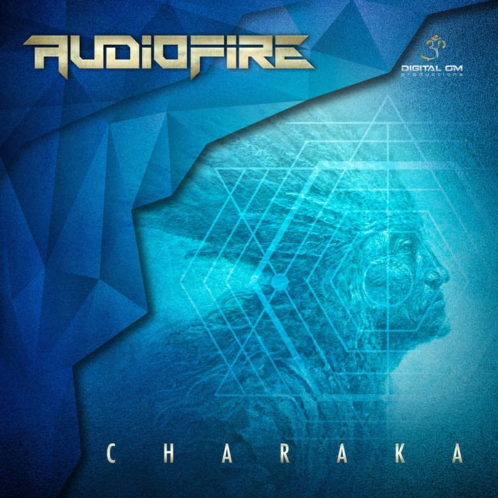 Digital Om - AUDIOFIRE - Charaka