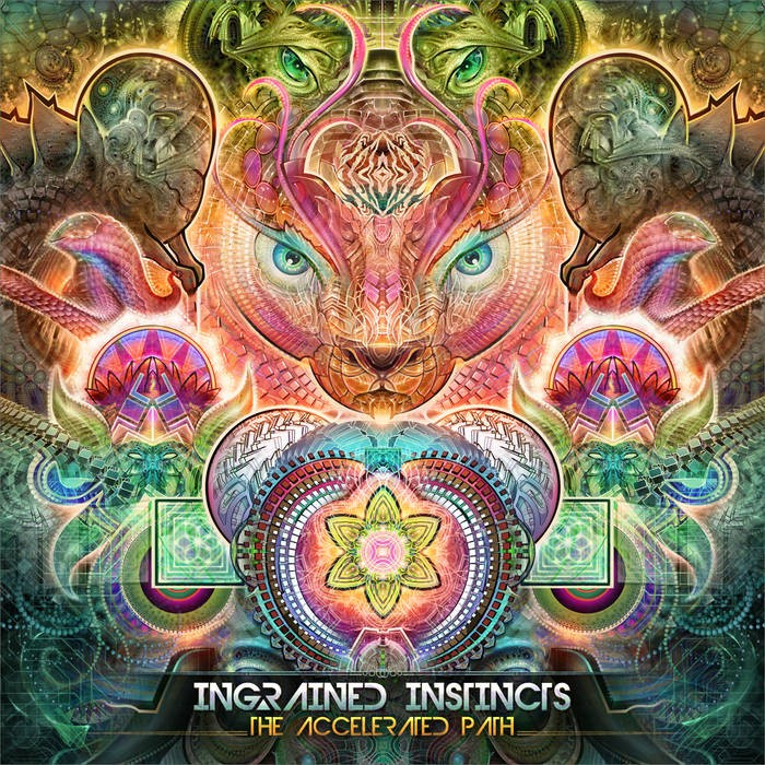Sangoma Records - INGRAINED INSTINCTS - The Accelerated Path