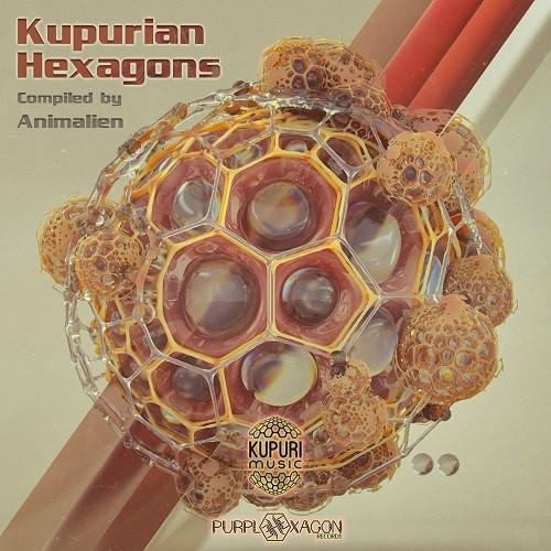 Purple Hexagon - Kupuri - .Various - Kupurian Hexagons