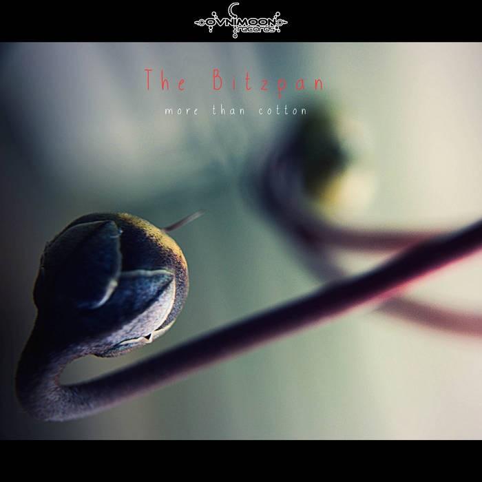 Ovnimoon Records - THE BITZPAN - More Than Cotton